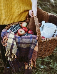 Winter Picknickmand